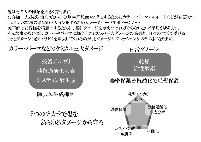 ダメージサプレッションシステム2