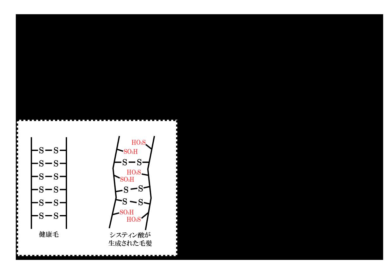 ダメージサプレッションシステム6